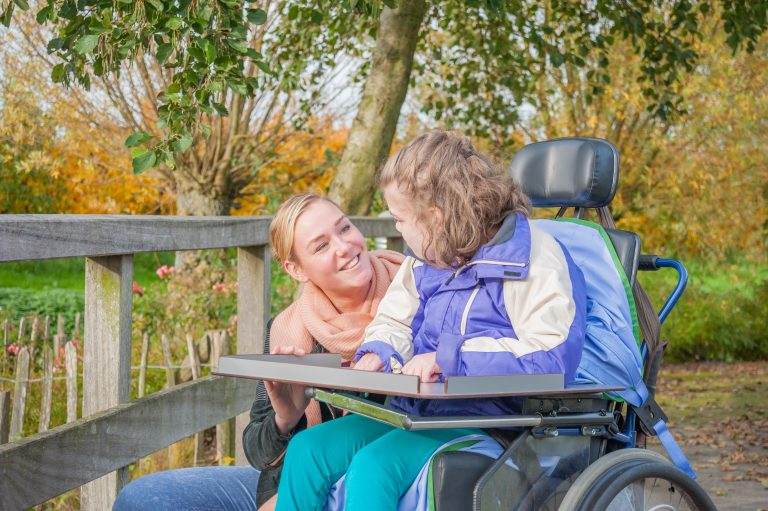 carer with a child with disability for regulated restrictive practices
